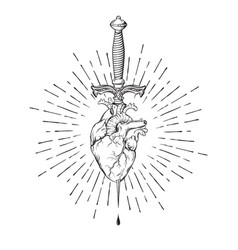 human heart pierced with ritual dagger vector image