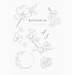line drawing floral wreaths frames branches vector image