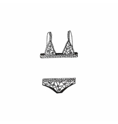 Lingerie Doodle bra and panties on the white vector image