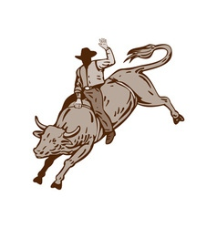 Rodeo Cowboy Bull Riding vector