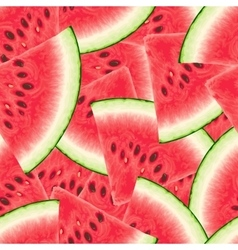 Seamless pattern with watermelon vector image vector image