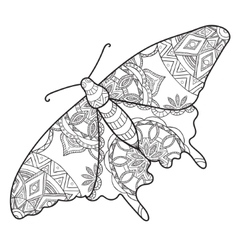 Detailed ornamental sketch of a moth vector image vector image
