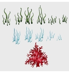 Set of underwater grass and coral reef elements vector image vector image