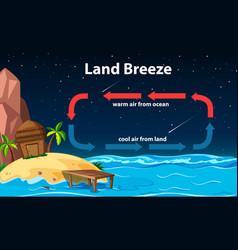 Diagram showing circulation land breeze vector