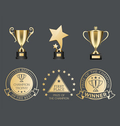 gold trophy cups and medals for competition set vector image