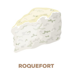 roguefortdifferent kinds of cheese single icon in vector image