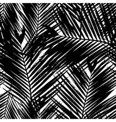 Palm Tree Leaves Seamless Pattern vector image