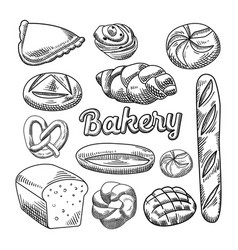 bread bakery food hand drawn doodle vector image vector image