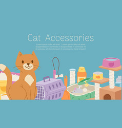 cat care accessories and food cartoon vector image