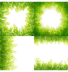 Green leaves frame Set isolated on white EPS 10 vector