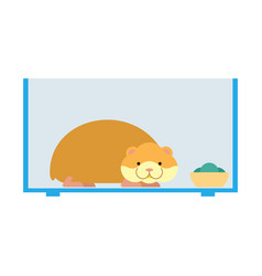 Hamster inside cell in aquarium cute pet on white vector