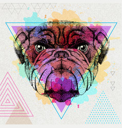 Hipster animal bulldog on artistic polygon vector