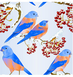 seamless texture bluebirds birds thrush small vector image