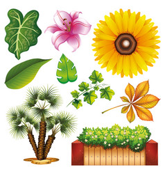 set isolated objects theme gardening vector image