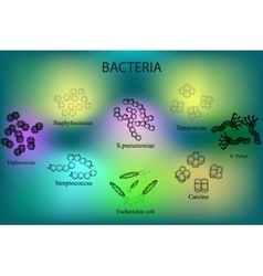 Set of bacteria Multicolored Staphylococcus vector image vector image