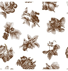 sketch berries seamless pattern vector image
