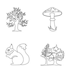 Dry tree protein poisonous fungus wildfire vector
