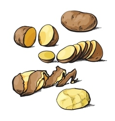 Set of cleaning potatoes and cut vector image