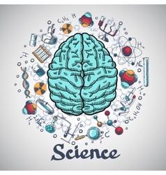 Brain sketch science concept vector image