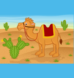 Camel in desert vector