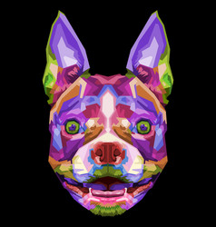 colorful boston terrier dog on pop art style vector image