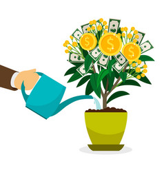 hand watering money tree vector image