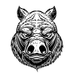 Head wild angry boar in vintage monochrome vector