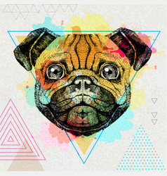 Hipster animal pug-dog on artistic polygon vector
