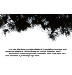 Pine branch tree vector