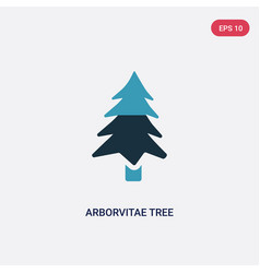 two color arborvitae tree icon from nature vector image