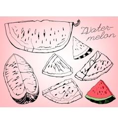 Watermelon 05 A vector