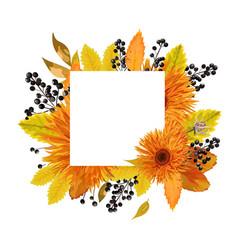 floral design card autumn orange gerbera flower vector image vector image