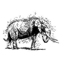 Hand sketch elephant vector image vector image