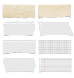 collection various ripped pieces paper vector image