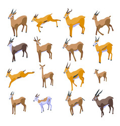 Gazelle icons set isometric style vector