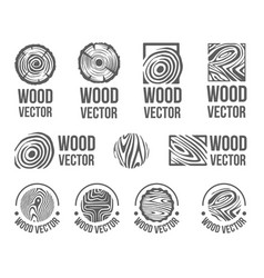 hand drawn sketch of abstract wood texture vector image