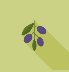 olive with leaves icon with long shadow vector image