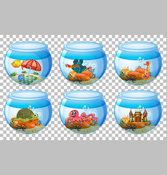 set different aquarium tanks isolated on vector image