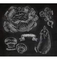 Vegetables cabbage eggplant radishes mushrooms vector image