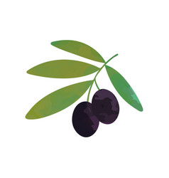 cartoon of branch with black ripe vector image