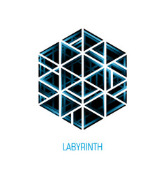 Hexagon volume labyrinth abstract logo vector
