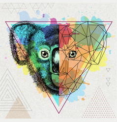 Hipster animal realistic and polygonal koala on vector