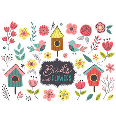 set isolated spring birds and flowers vector image