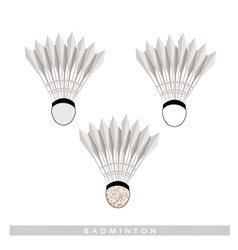 Set of Shuttlecock on A White Background vector image vector image