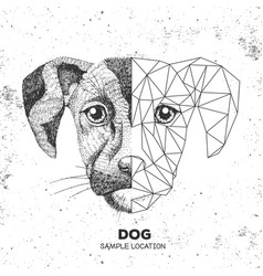 Hipster animal realistic and polygonal dog face vector