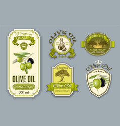 Oilve oil labels vector image