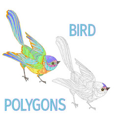 Rainbow bird polygons coloured and outline vector