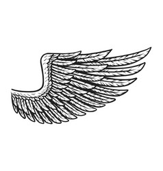 vintage eagle wing template vector image