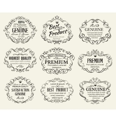Calligraphic Design Elements Frame vector image vector image
