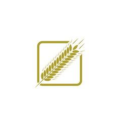 Ear of wheat farm logo bread concept sign vector image vector image